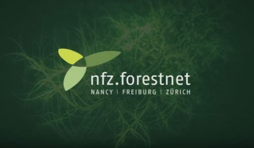 Retrace the NFZ.forestnet summerschools in videos !