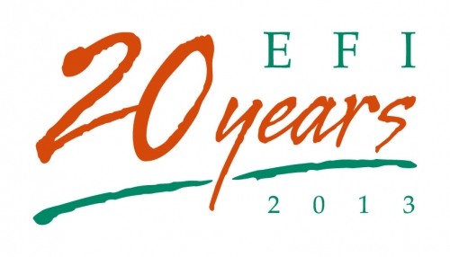 EFI 20 years official logo
